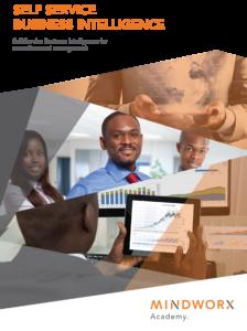 Self Service Business Intelligence